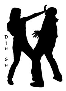 Dju-Su (ab 18 Jahre) @ Budo-Club Viersen e.V.